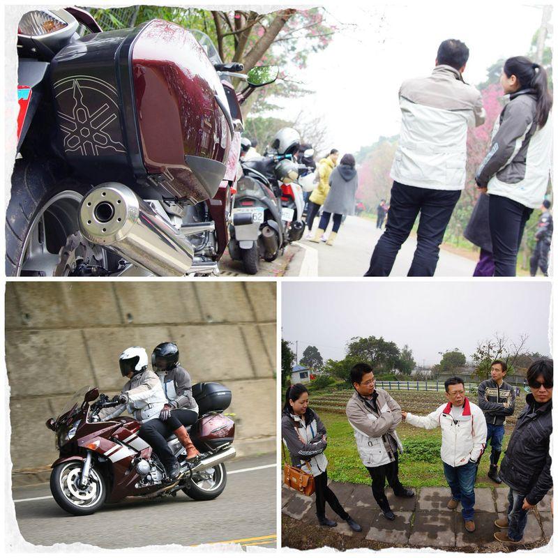台湾の春を仲間とバイクで花見ツーリング