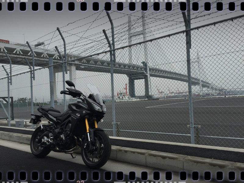Tracer bay bridge