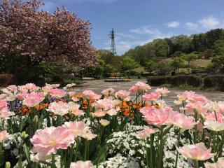 Nasunogahara park2