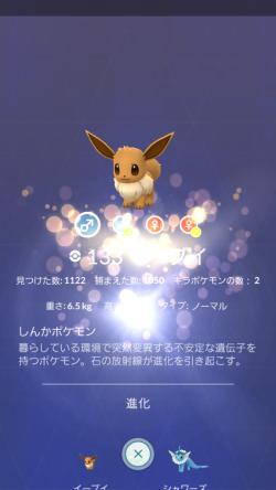 Pokémon GO_キライーブイ