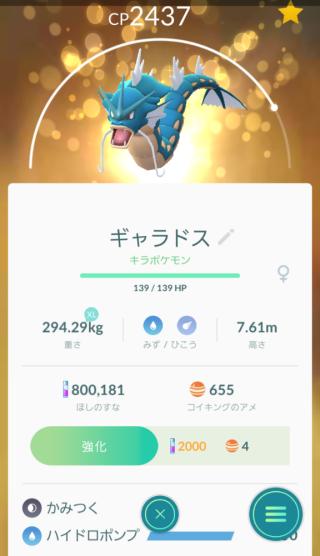 Pokémon GO_100%ギャラドス