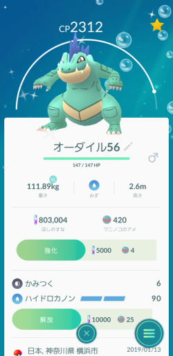 Pokémon GO_オーダイル色違い