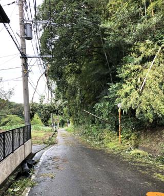 台風15号直後