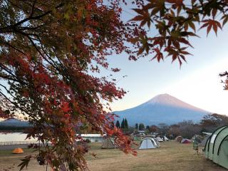 17モミジと朝焼けの富士