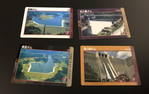 Special dam card