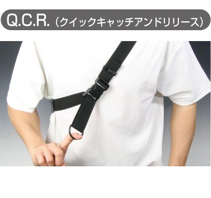 RR9607 QCR