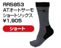 RR5853