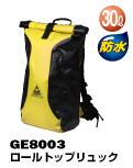 ge8003