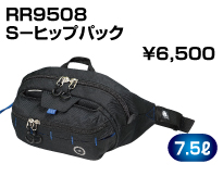 RR9508
