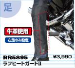 RR5895