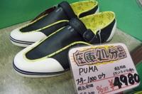 Puma_l